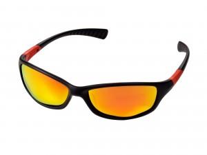 Solglasögon Robson